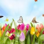Хочу  весну!